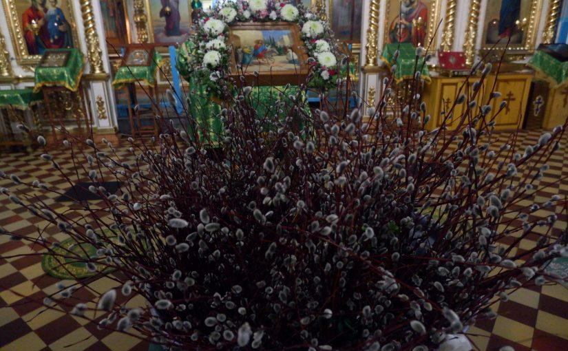 Преосвященнейший Митрофан совершил Всенощное бдение в канун праздника Входа Господня в Иерусалим